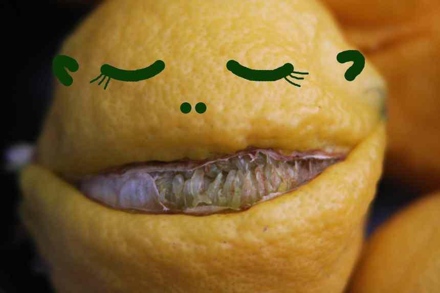 Lemon weird 5 low res