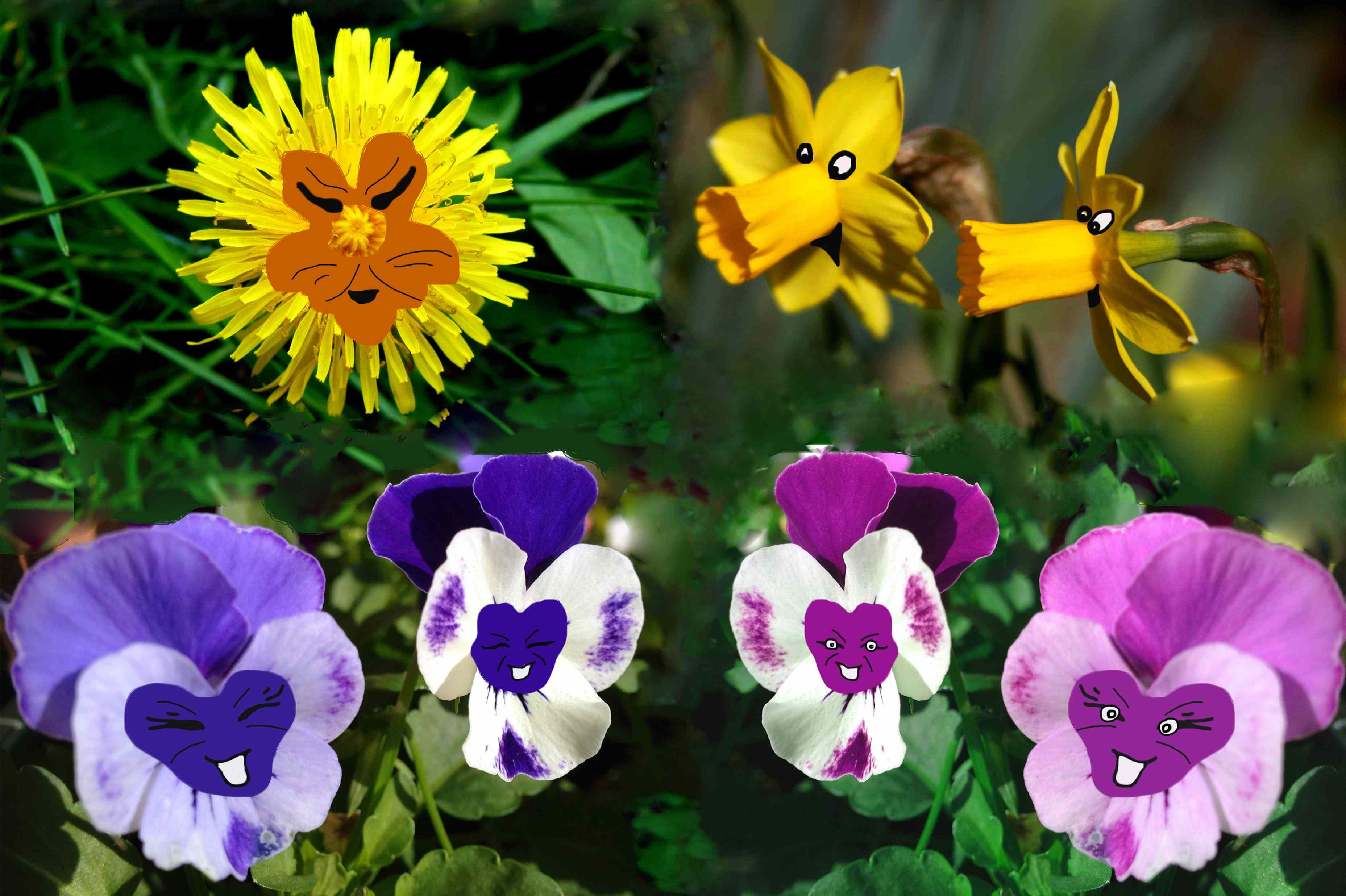 how to make alice in wonderland flowers