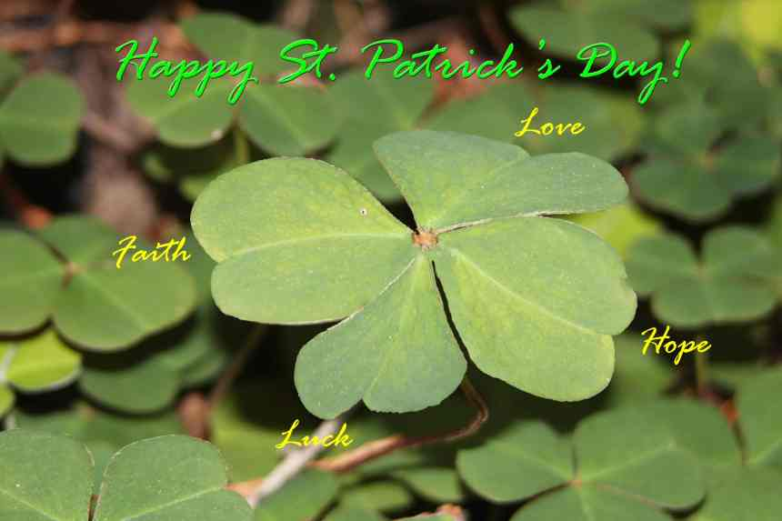St Patricks Day low res