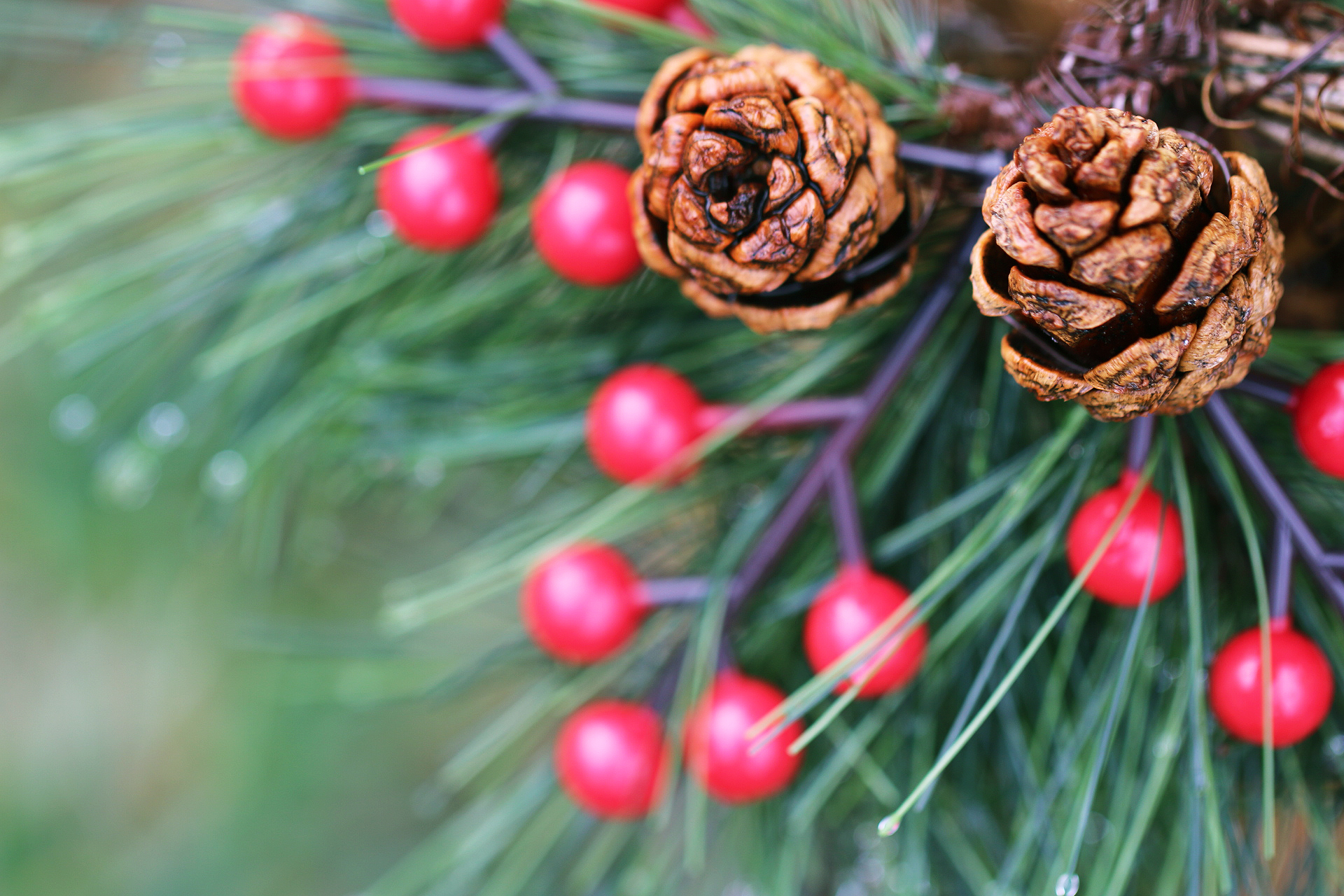 festive-berries-cones