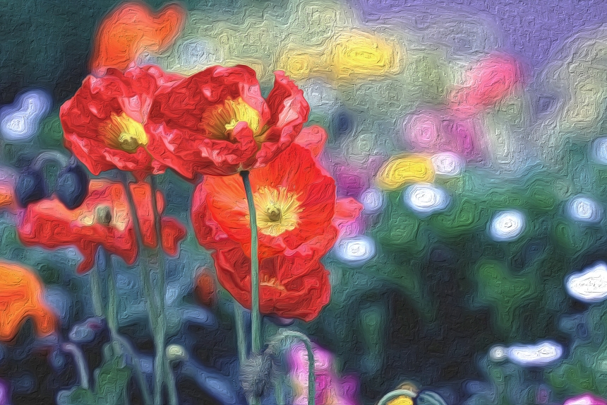 Spring Poppies Painted.jpg
